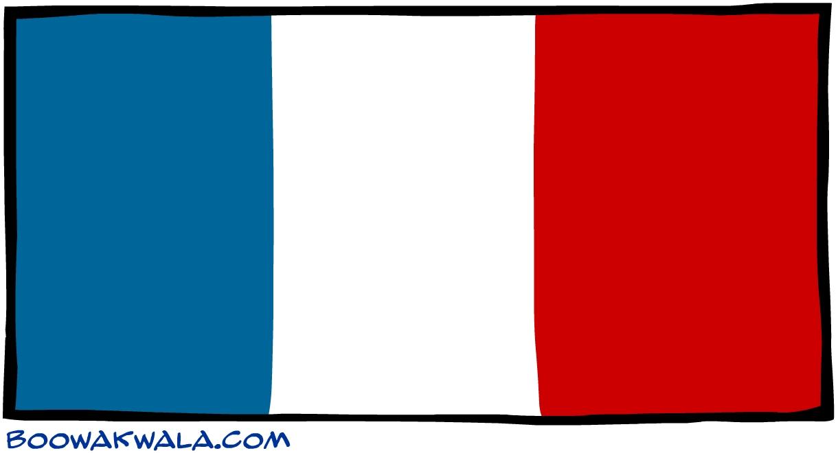 Guyane fran aise drapeau - Koala et boowa ...
